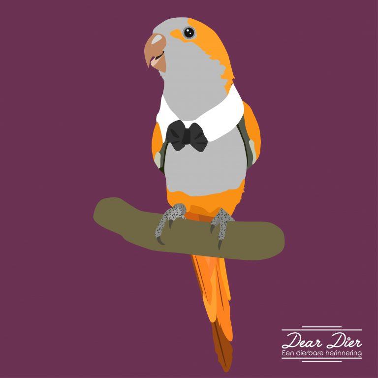 Illustratie papagaai