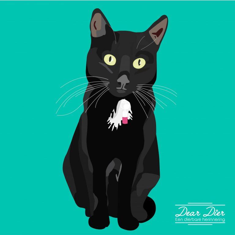 Illustratie kat